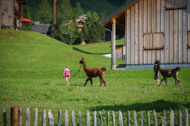 Gorfion**** Das Familienhotel: Lama-Trekking